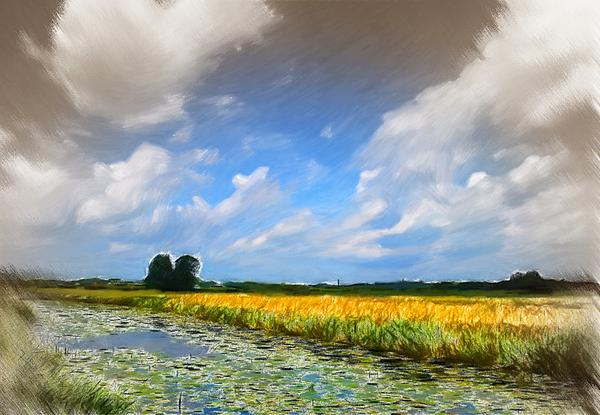 Wide Country Print by Stefan Kuhn