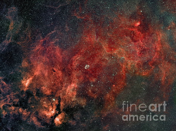Widefield View Of He Crescent Nebula Print by Rolf Geissinger