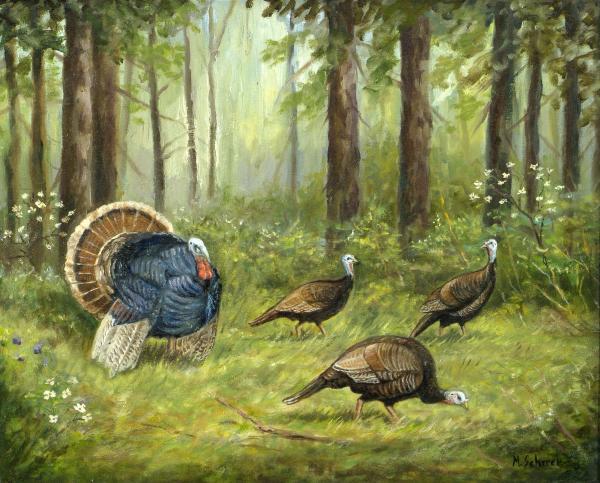 لـــوحات michael Scherer wild-turkey-michael-