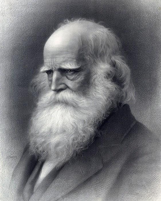 William Cullen Bryant 1794-1878 Was An Print by Everett