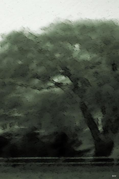 Willow Green Print by Debra     Vatalaro