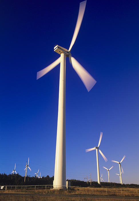 Wind Turbines Print by David Nunuk