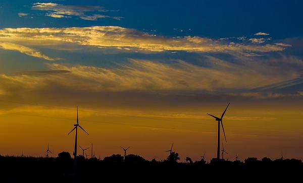 Windfarm Print by Drew Wing