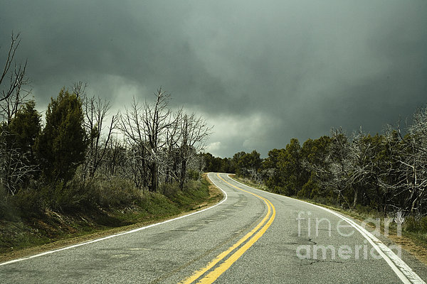 Winding Two Lane Road Print by Ned Frisk