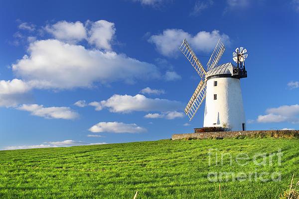 Windmill Print by Drew McAvoy