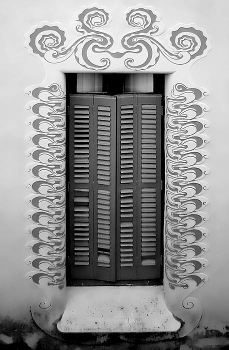 Window Flowing Print by Roberto Alamino