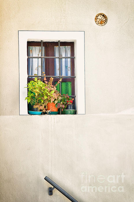 Window With White Frame And Vases Print by Silvia Ganora