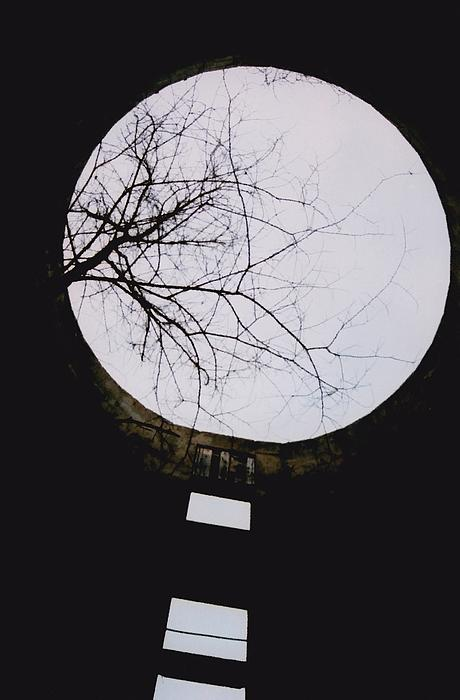 Jennifer Choate - Windows to the Moon