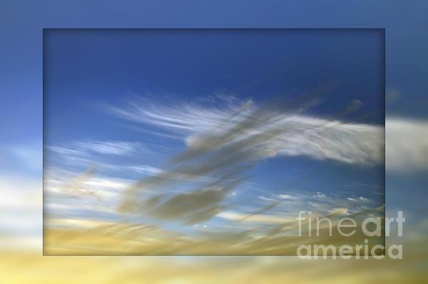 Windswept 2 Print by Kaye Menner