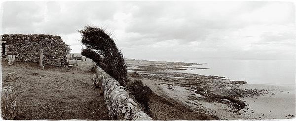 Windswept Machrihanish Print by Jan Faul