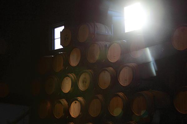 Wine Barrels Print by Viktor Savchenko