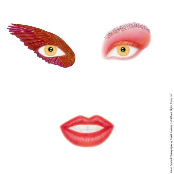 Wing eye for Wing eyecare