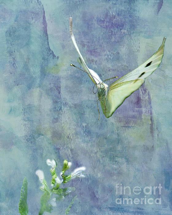 Winging It Print by Betty LaRue