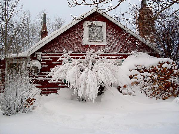 Winter Cabin Print by Wesley Hahn