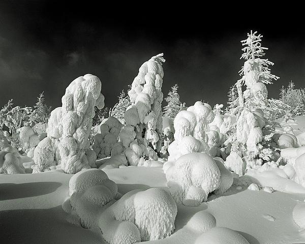 Vladimir Kholostykh - Winter Cover
