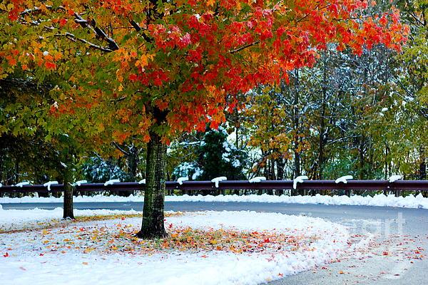 Everett Houser - Winter Fall