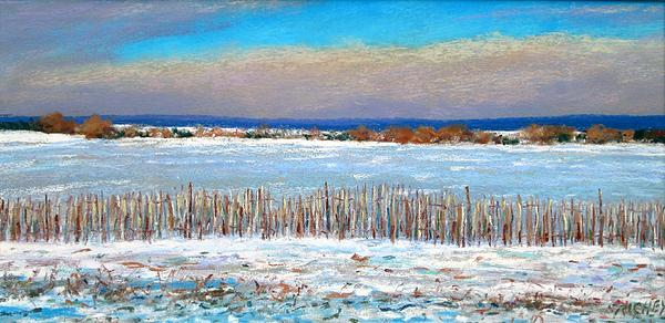 Winter Fields With Snow Fence Print by Bob Richey