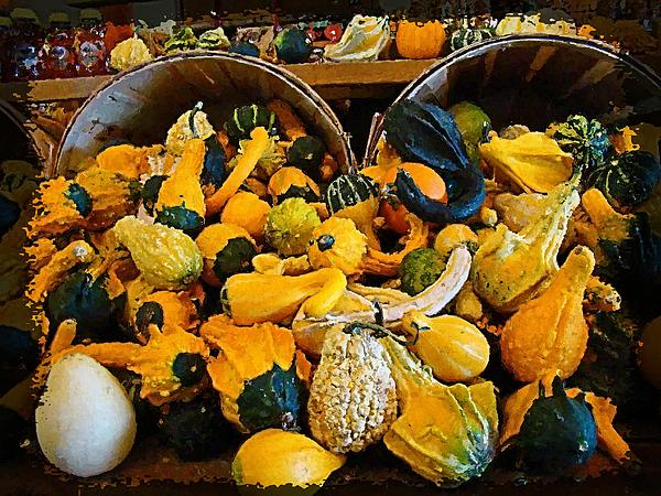 Winter Gourds  Print by Nick Kloepping