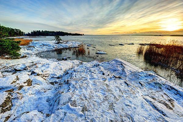 Winter In Finland Print by Roman Rodionov