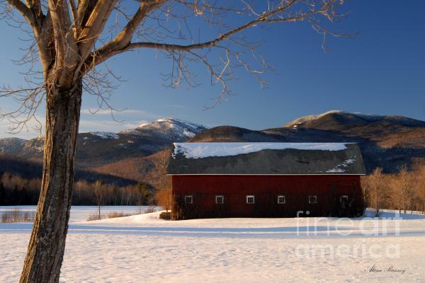 Alana Ranney - Winter in New England