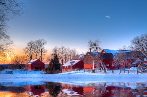 Winter In New England Print by Michael Petrizzo