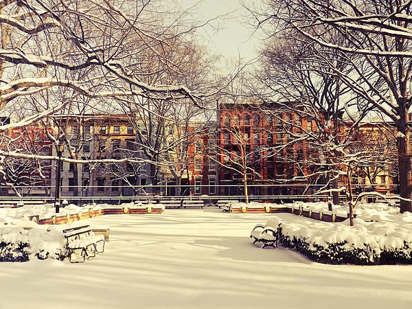 Winter - New York City Print by Vivienne Gucwa