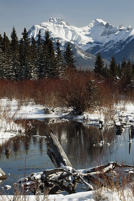 Winter Over Vermilion Lake, Banff Print by Michael Interisano