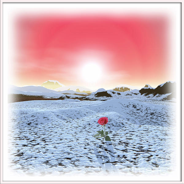 Winter Rose Print by Harald Dastis