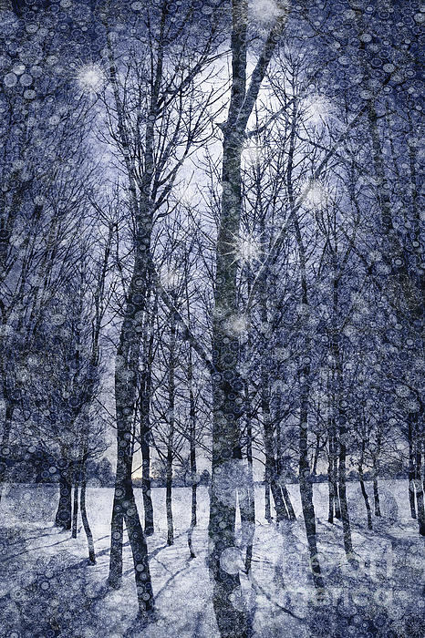 Andrew Bret Wallis - Winter Silvery Moon