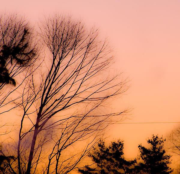 Winter Sunrise Print by Laurie Breton