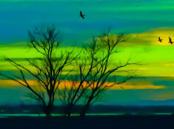 Gina  Art Photography - Winter Sunset