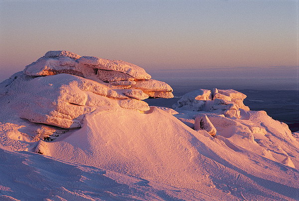Winter View Of The Top Of Brocken Print by Norbert Rosing