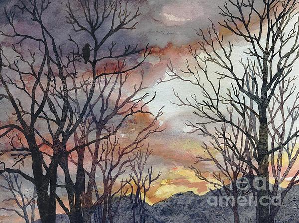 Anne Gifford - Winter Watch