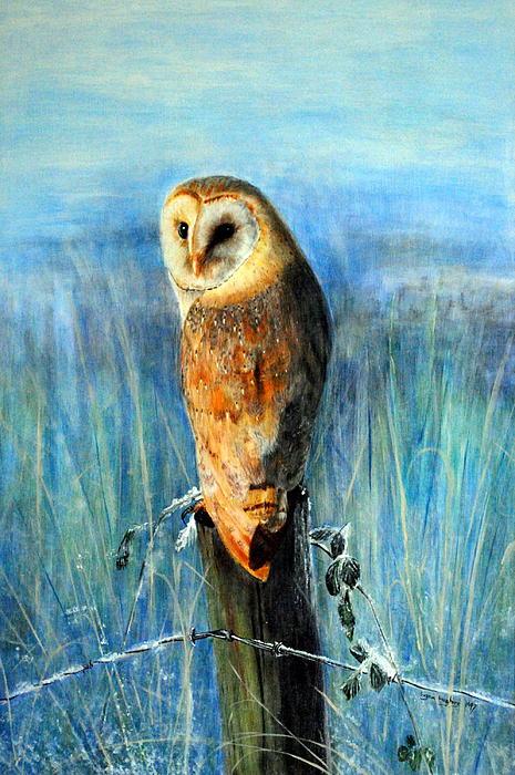 Lynn Hughes - Winter Watch