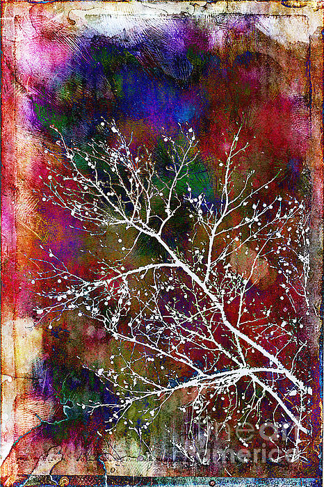 Winter Wishes Print by Judi Bagwell