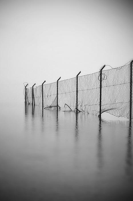 Wire Mesh Fence Print by Joana Kruse