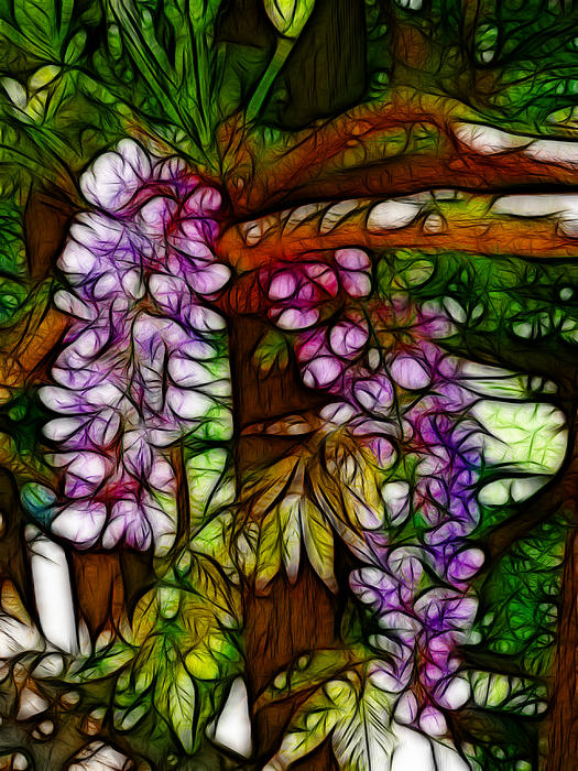 Cindy Wright - Wisteria Flowers Abstract