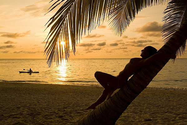 Woman Resting On A Palm Tree At Sunset Print by Richard Nowitz