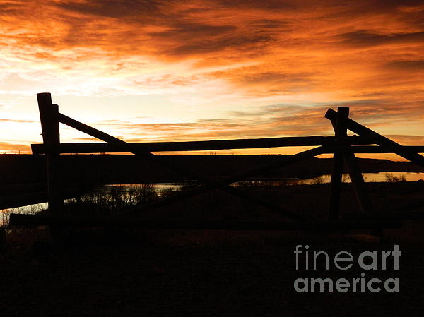Wood Fence Sunrise Print by Sara  Mayer