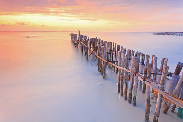Wooden Posts Into  Sea Print by Enzo Figueres