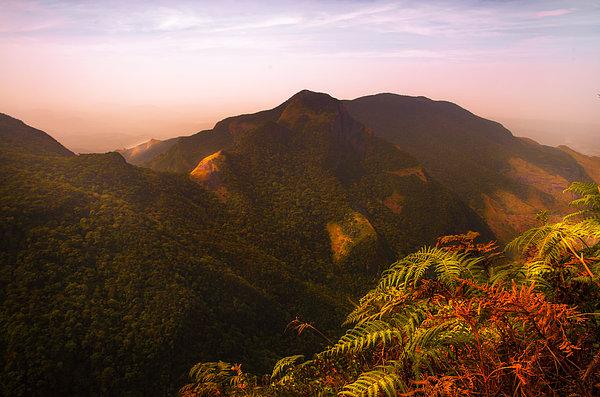 Worlds End. Horton Plains National Park I. Sri Lanka Print by Jenny Rainbow