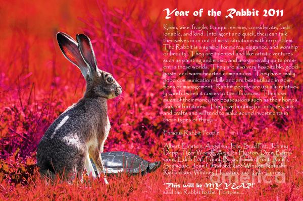 Year Of The Rabbit 2011 . Red Print by Wingsdomain Art and Photography