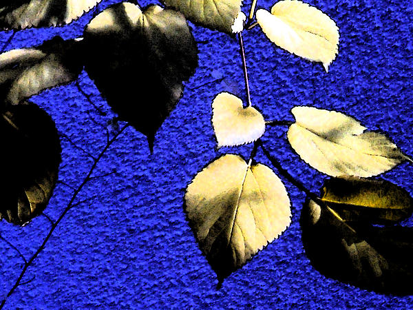 Eric Forster - Yellow Leaves On Blue