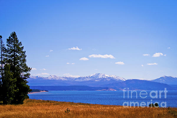 Yellowstone Lake Photograph  - Yellowstone Lake Fine Art Print