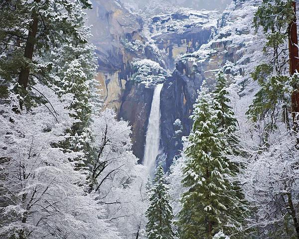 Gregory Scott - Yosemite Falls in the Snow