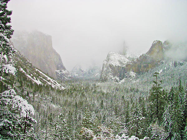 Heidi Smith - Yosemite Snow Storm