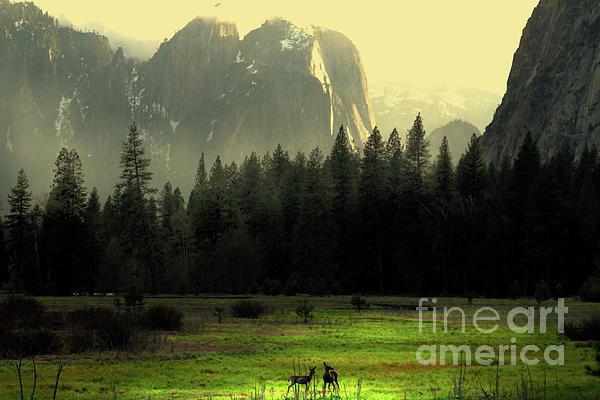 Yosemite Village Golden Print by Wingsdomain Art and Photography