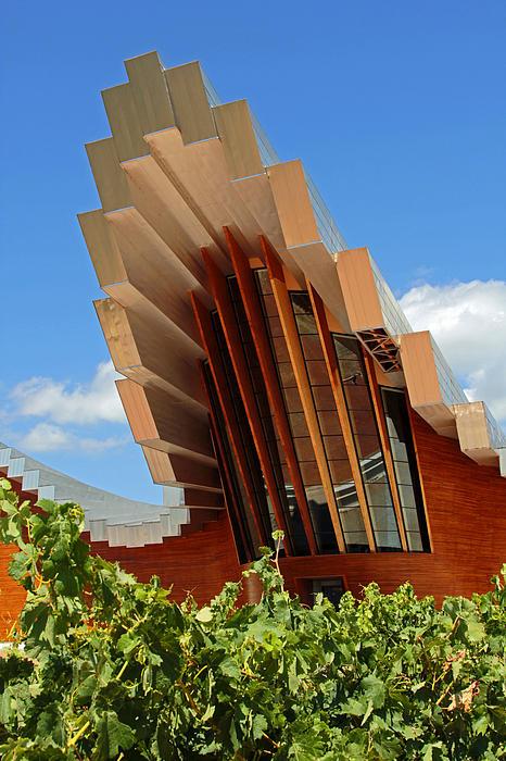 Ysios Winery Spain Print by John Stuart Webbstock
