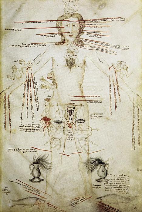 Zodiacal Man, 15th Century Print by