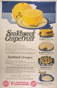 Nineteen-tens Art -  1910s  Usa Grapefruit Florida Fruit by The Advertising Archives